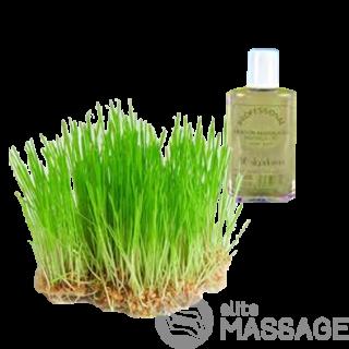 Массажное масло из ростков пшеницы (200 мл)